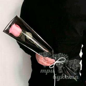 Мини-букет из розовой розы в пленке